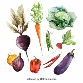 Watercolor-vegetables_1002-14