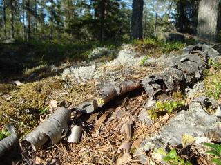 Utsikt_från_Toppen_på_Hässningberget